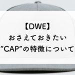 【ディズニー英語システム】CAPの特徴と応募方法について