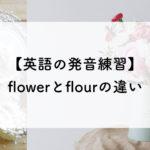 【英語の発音練習Lv.10】flowerとflourの違い